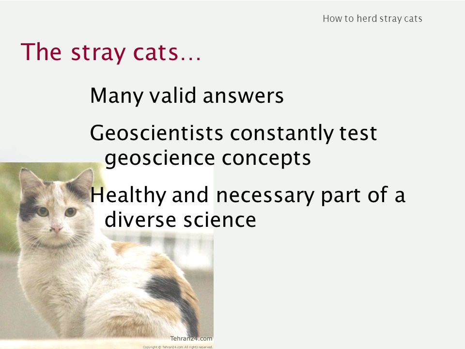 The stray cats… How to herd stray cats Many valid answers Geoscientists constantly test geoscience concepts Healthy and necessary part of a diverse science
