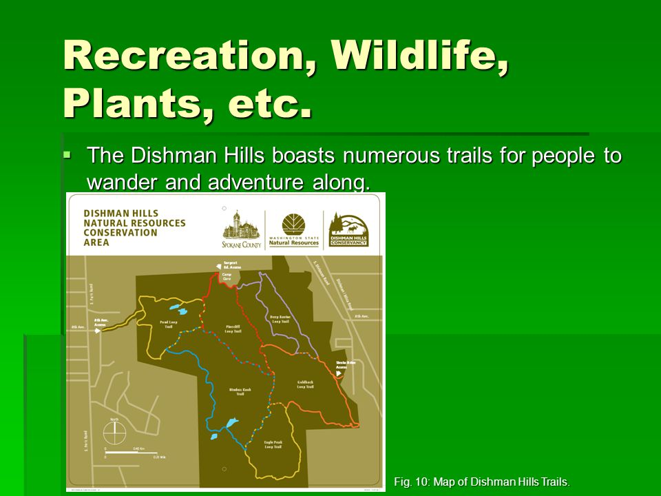 Recreation, Wildlife, Plants, etc.  The Dishman Hills boasts numerous trails for people to wander and adventure along. Fig. 10: Map of Dishman Hills