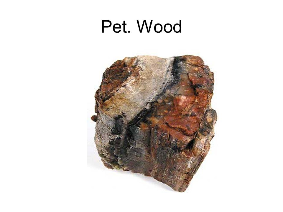 Pet. Wood