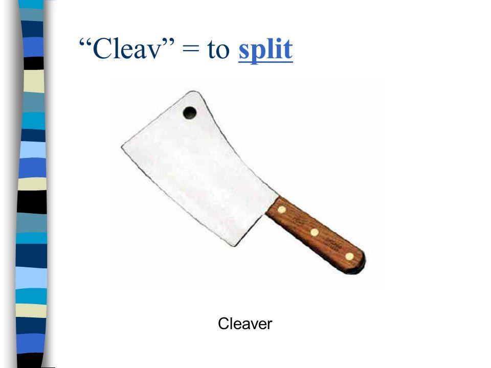 Cleav = to split Cleaver