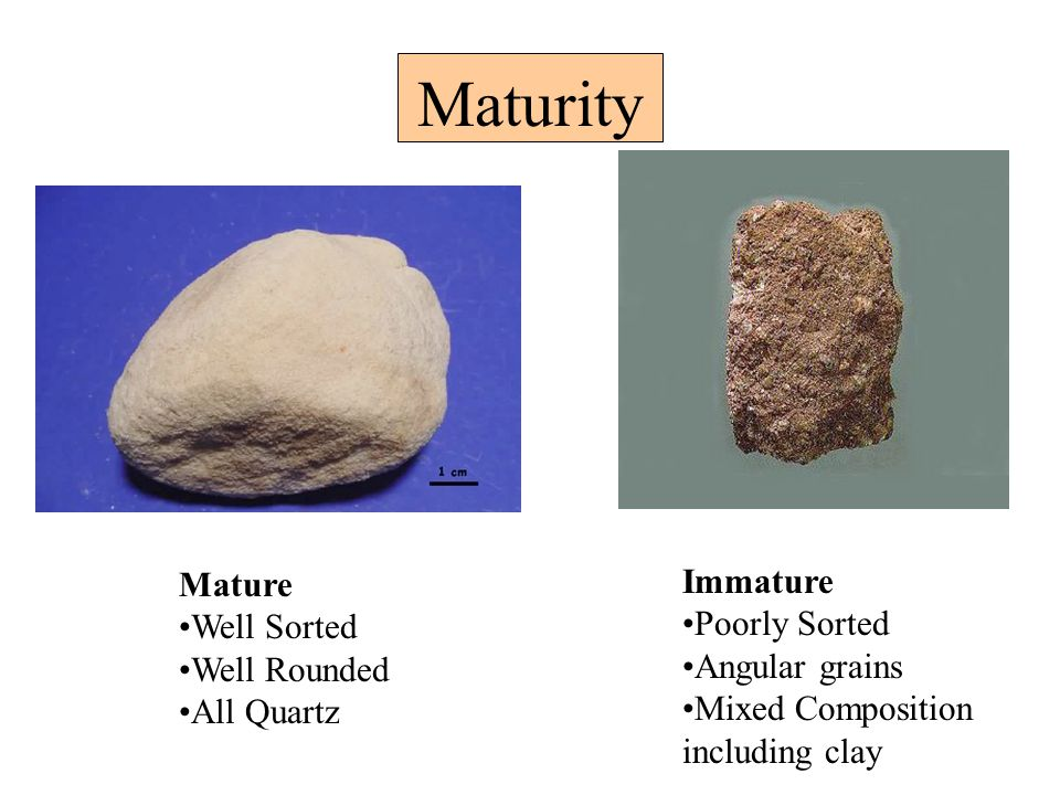 Maturity Mature Well Sorted Well Rounded All Quartz Immature Poorly Sorted Angular grains Mixed Composition including clay