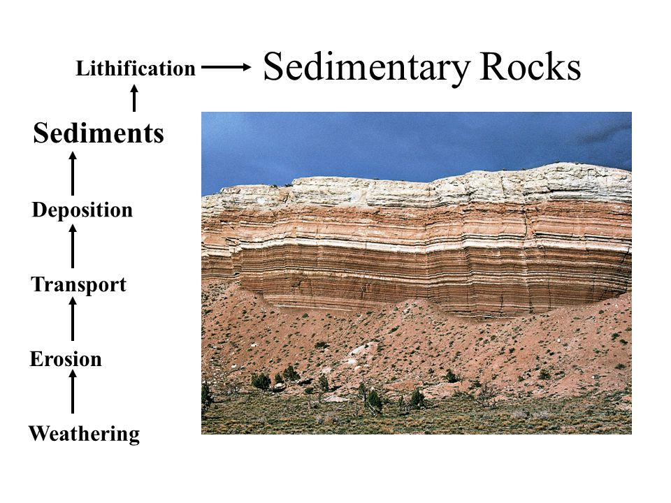 Sedimentary Rocks Weathering Erosion Transport Deposition Sediments Lithification