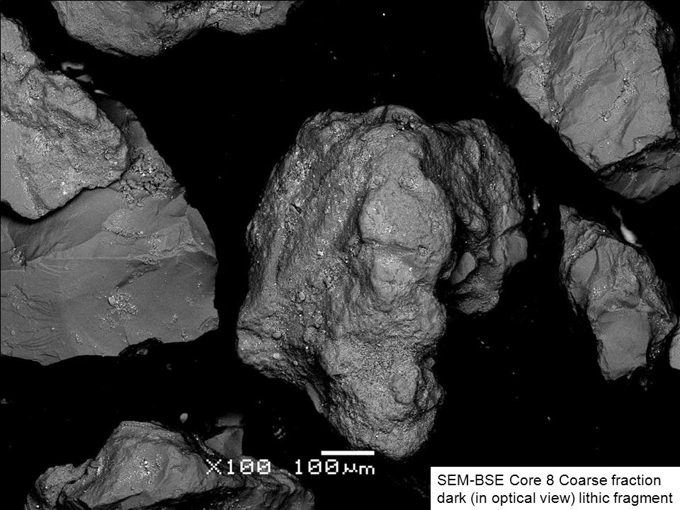 SEM-BSE Core 8 Coarse fraction FE-Mn mineral on quartz grain