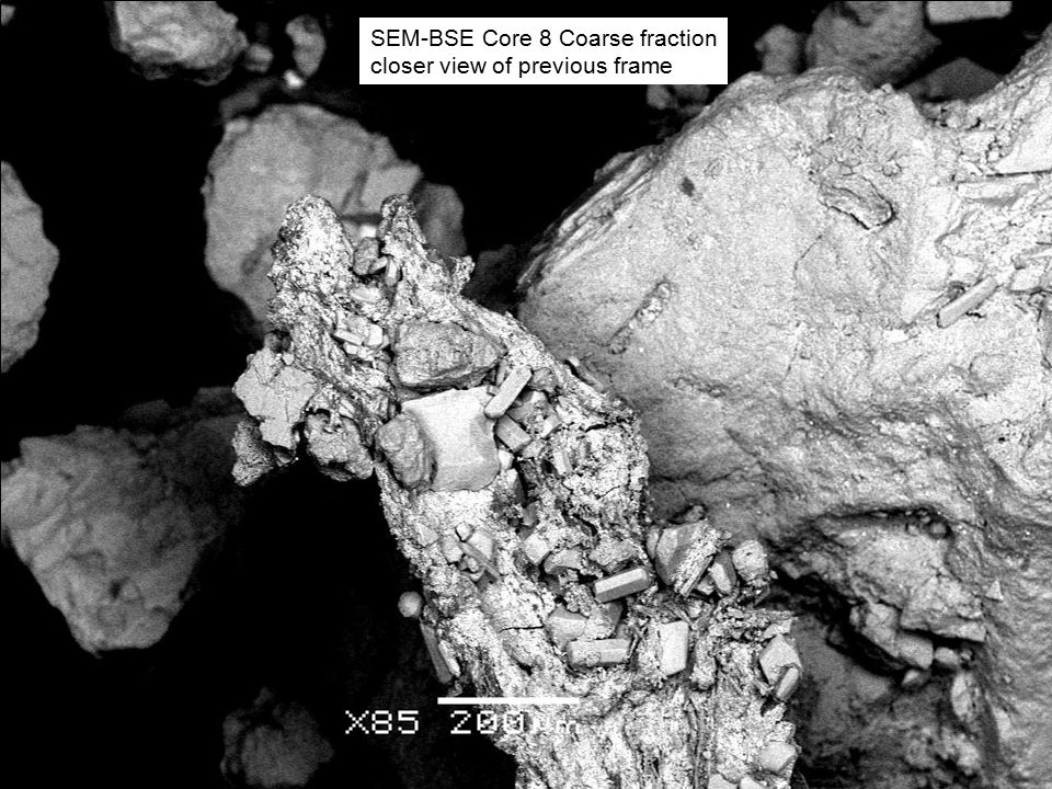 SEM-BSE Core 8 Coarse fraction closer view of previous frame