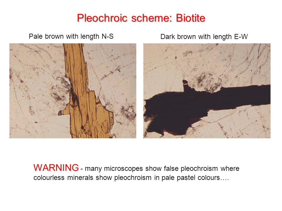 Pleochroic scheme: Biotite Pale brown with length N-S Dark brown with length E-W WARNING - many microscopes show false pleochroism where colourless minerals show pleochroism in pale pastel colours….
