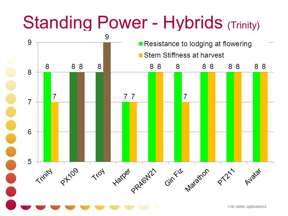 Standing Power - Hybrids (Trinity) 12