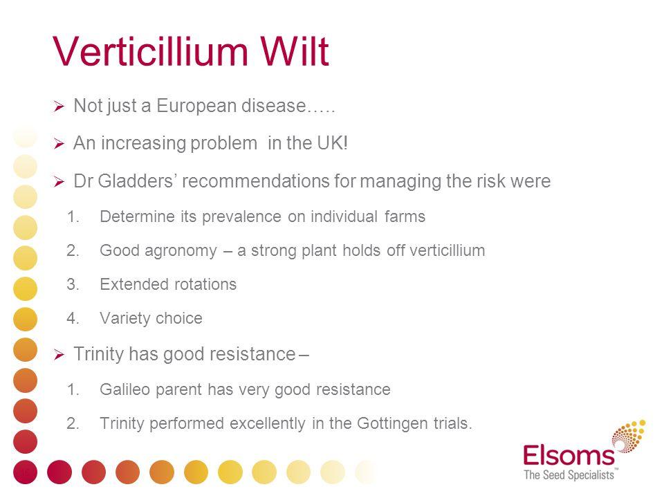 Verticillium Wilt  Not just a European disease…..