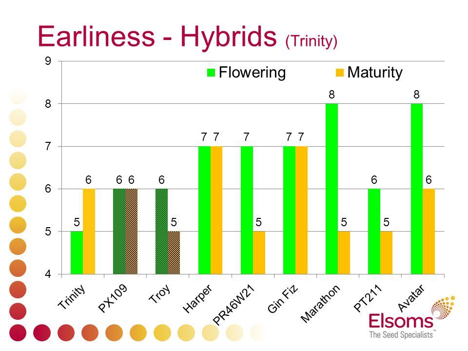 Earliness - Hybrids (Trinity) 8