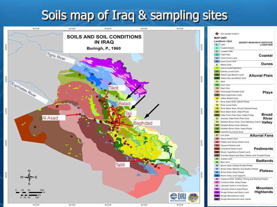 Soils map of Iraq & sampling sites Al Asad Balad Tikrit Tallil Taji Baghdad Euphrates River Tigris River