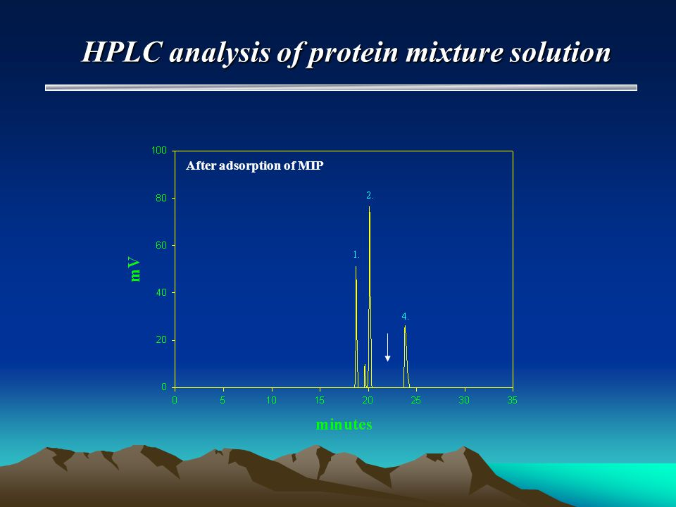 HPLC analysis of protein mixture solution After adsorption of MIP