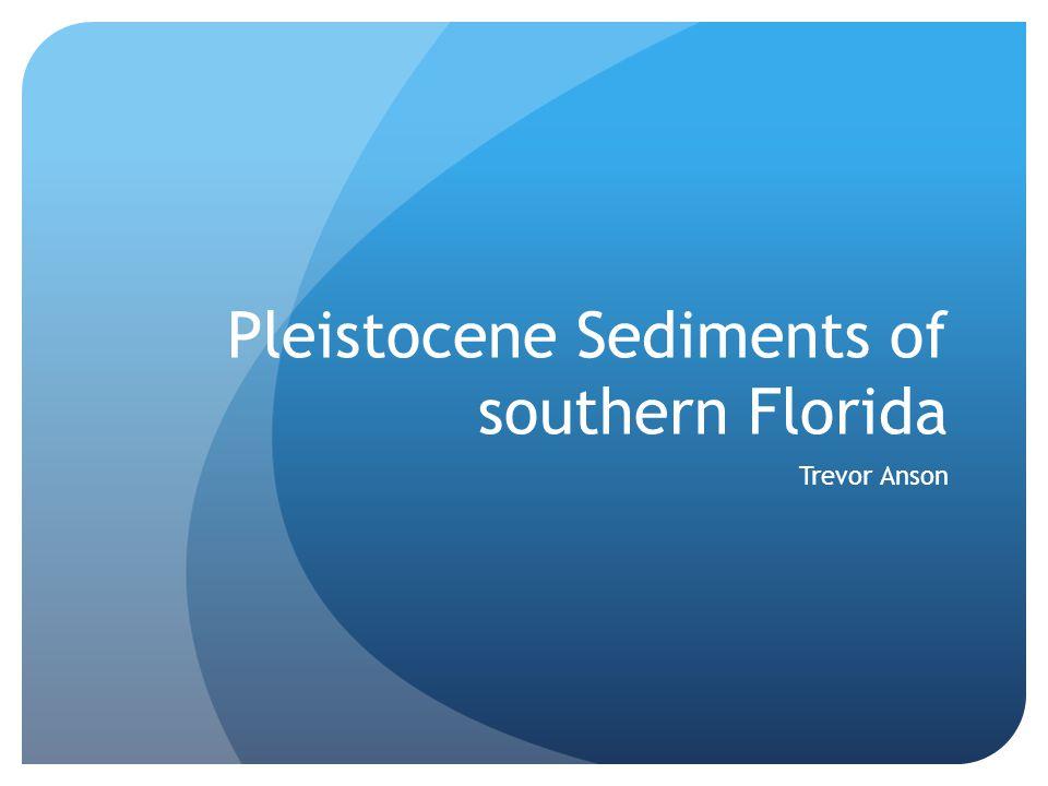 Pleistocene Sediments of southern Florida Trevor Anson