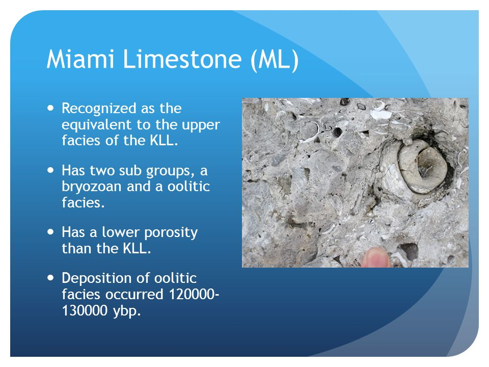 Miami Limestone (ML) Recognized as the equivalent to the upper facies of the KLL.