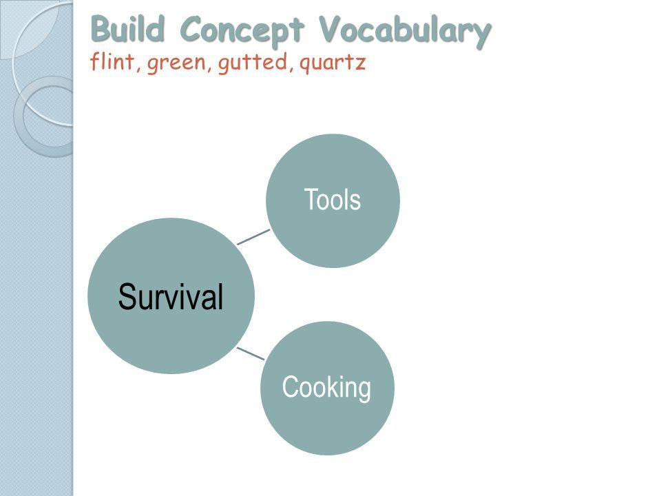 Build Concept Vocabulary Build Concept Vocabulary flint, green, gutted, quartz ToolsCooking Survival