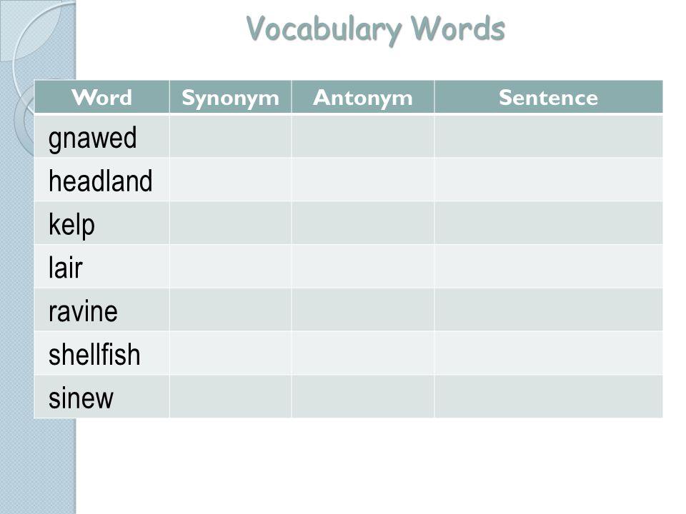 Vocabulary Words WordSynonymAntonymSentence gnawed headland kelp lair ravine shellfish sinew
