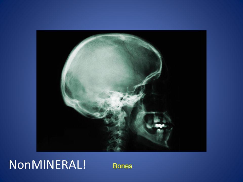 Bones NonMINERAL!