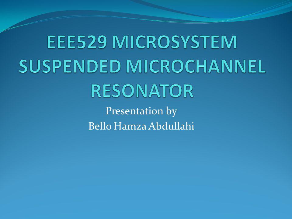 Presentation by Bello Hamza Abdullahi