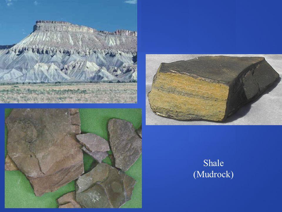 Shale (Mudrock)