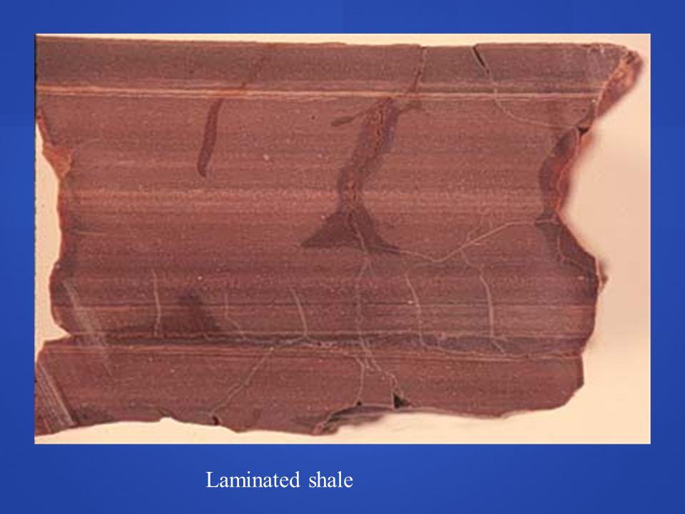 Laminated shale