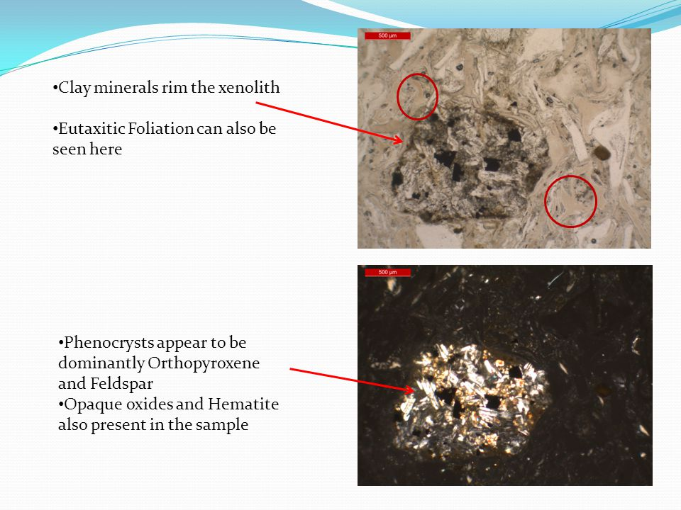 Phenocrysts appear to be dominantly Orthopyroxene and Feldspar Opaque oxides and Hematite also present in the sample Clay minerals rim the xenolith Eutaxitic Foliation can also be seen here