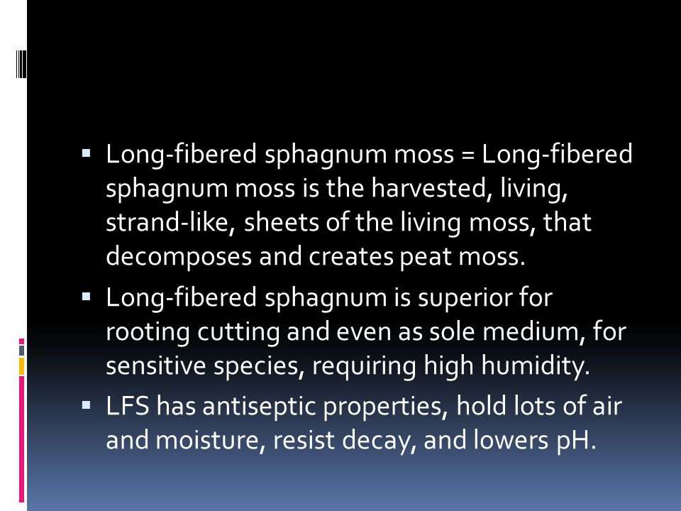  Long-fibered sphagnum moss = Long-fibered sphagnum moss is the harvested, living, strand-like, sheets of the living moss, that decomposes and creates peat moss.