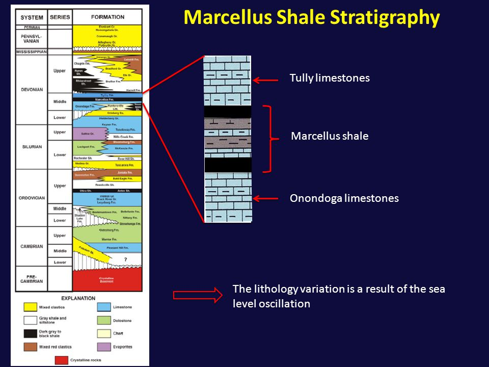 Marcellus Shale Stratigraphy Tully Fm Tully limestones Onondoga limestones The lithology variation is a result of the sea level oscillation Marcellus