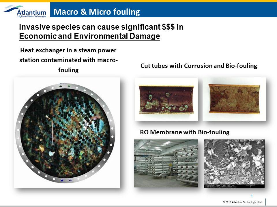 © 2011 Atlantium Technologies Ltd. Mussel blockage of pipes 5