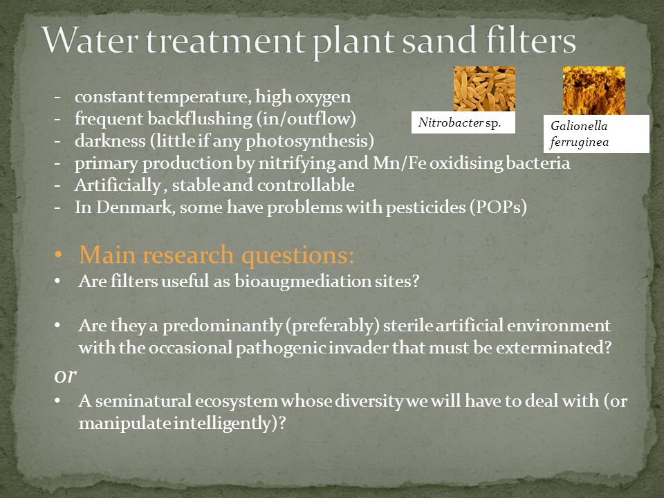 -constant temperature, high oxygen -frequent backflushing (in/outflow) -darkness (little if any photosynthesis) -primary production by nitrifying and Mn/Fe oxidising bacteria -Artificially, stable and controllable -In Denmark, some have problems with pesticides (POPs) Main research questions: Are filters useful as bioaugmediation sites.
