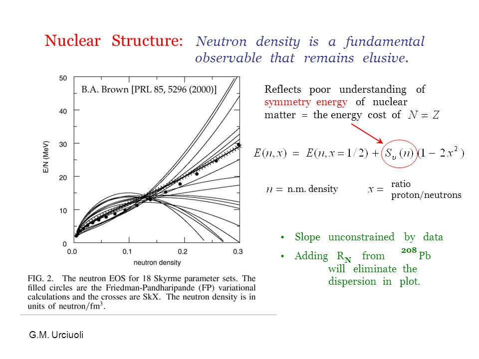 G.M. Urciuoli Nuclear Structure: Neutron density is a fundamental observable that remains elusive.