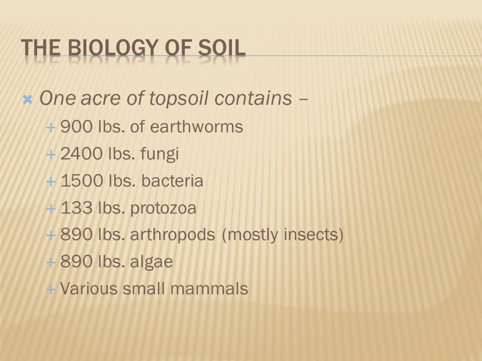  One acre of topsoil contains –  900 lbs. of earthworms  2400 lbs.