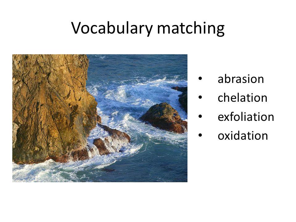 Vocabulary matching abrasion chelation exfoliation oxidation