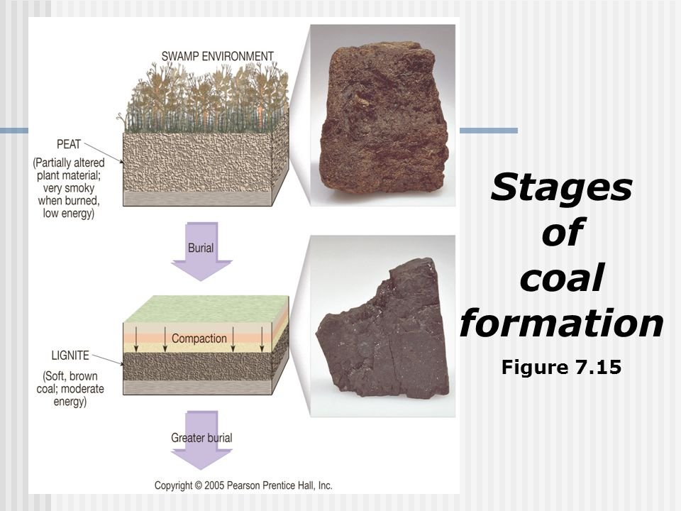 Stages of coal formation Figure 7.15