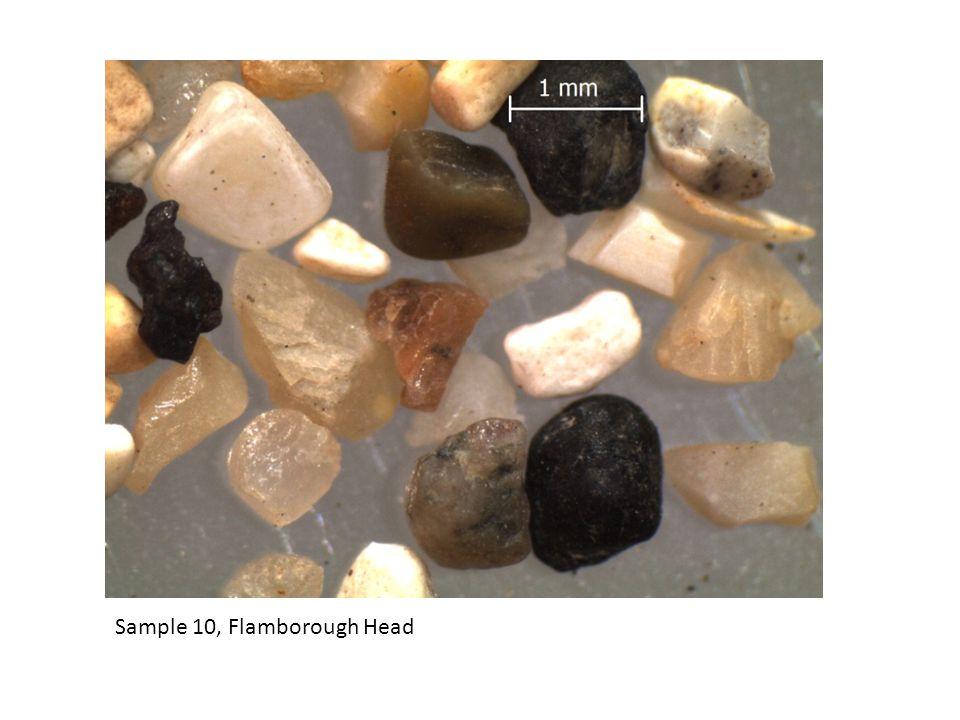 Sample 10, Flamborough Head