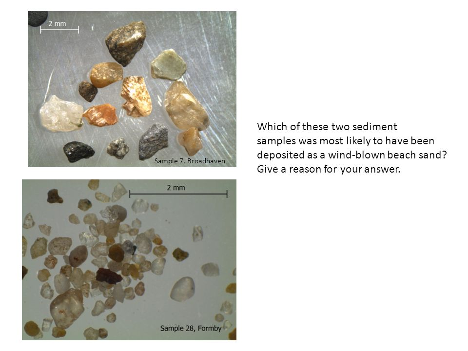 Which of these two sediment samples was most likely to have been deposited as a wind-blown beach sand.