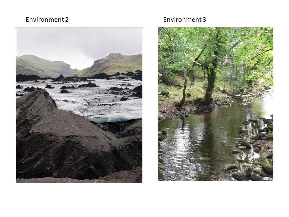Environment 2Environment 3