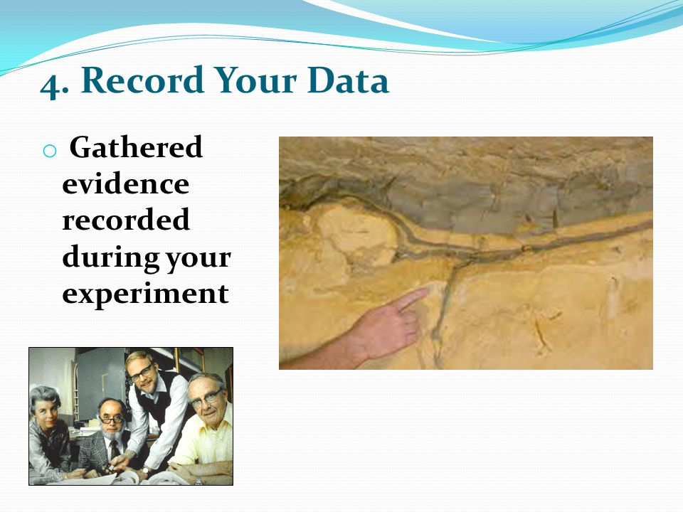 4. Record Your Data o Gathered evidence recorded during your experiment