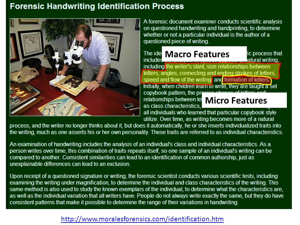 http://www.moralesforensics.com/identification.htm Macro Features Micro Features