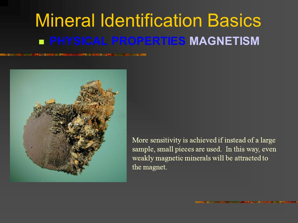 Mineral Identification Basics PHYSICAL PROPERTIES MAGNETISM MAGNETISM is the ability of a mineral to be attracted by a magnet.