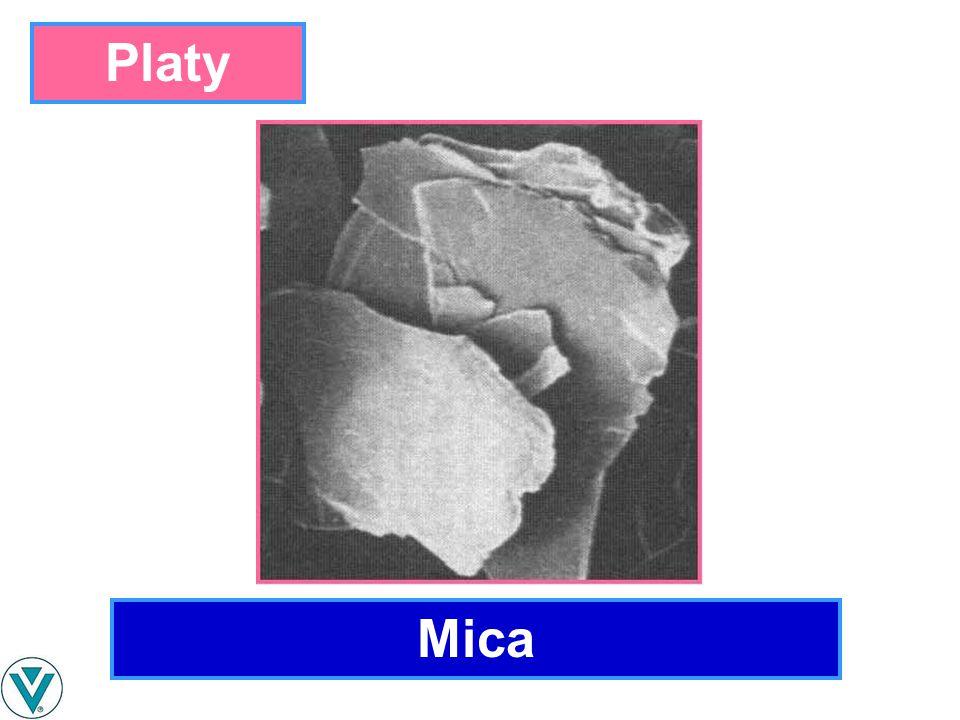 Mica Platy