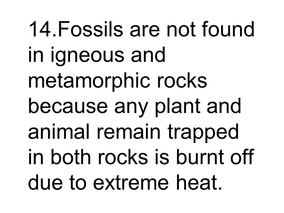 14.Fossils are not found in igneous and metamorphic rocks because any plant and animal remain trapped in both rocks is burnt off due to extreme heat.