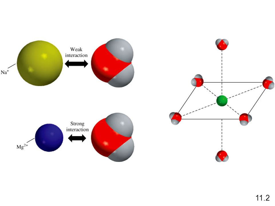 Intermolecular Forces Dispersion Forces Attractive forces that arise as a result of temporary dipoles induced in atoms or molecules 11.2 ion-induced dipole interaction dipole-induced dipole interaction