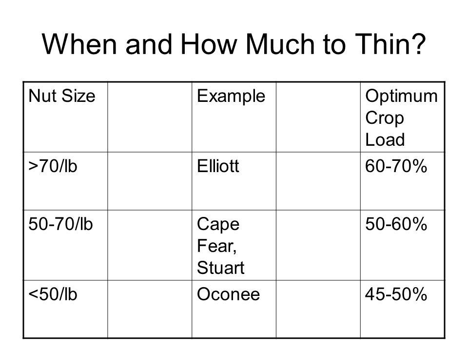 When and How Much to Thin? Nut SizeExampleOptimum Crop Load >70/lbElliott60-70% 50-70/lbCape Fear, Stuart 50-60% <50/lbOconee45-50%