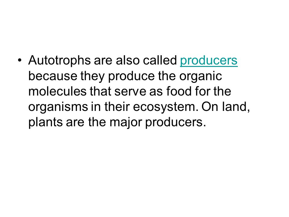 Autotrophs are also called producers because they produce the organic molecules that serve as food for the organisms in their ecosystem.