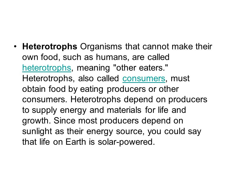 Heterotrophs Organisms that cannot make their own food, such as humans, are called heterotrophs, meaning other eaters. Heterotrophs, also called consumers, must obtain food by eating producers or other consumers.