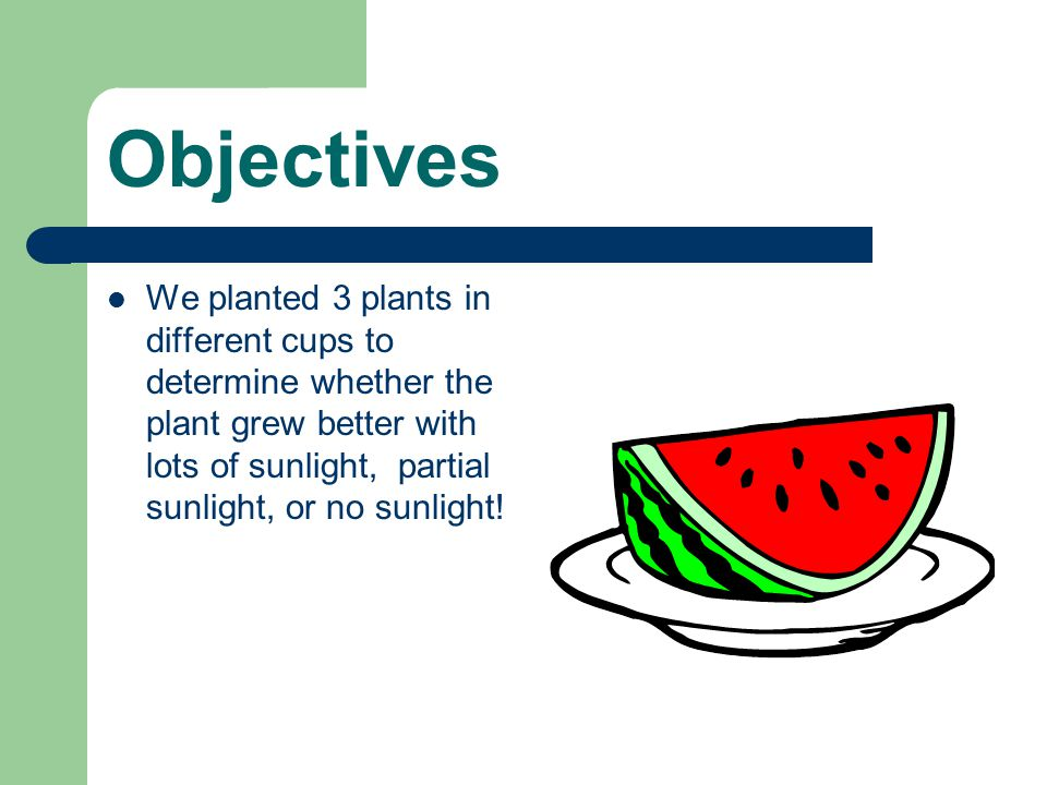 Methods we used Type of Soil: Amount of water: Sunlight requirements: How often did you water the plant.