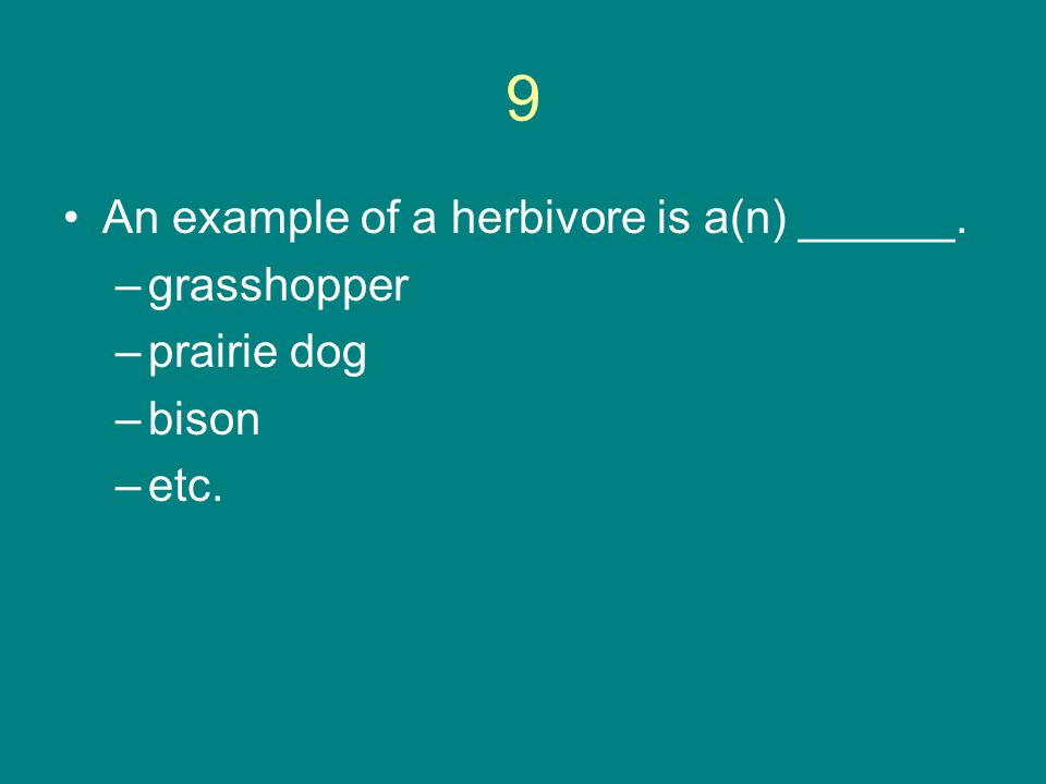 9 An example of a herbivore is a(n) ______. –grasshopper –prairie dog –bison –etc.