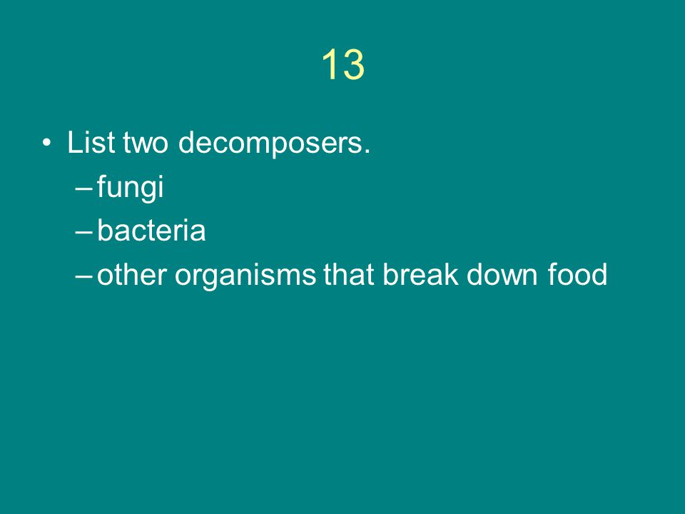 13 List two decomposers. –fungi –bacteria –other organisms that break down food