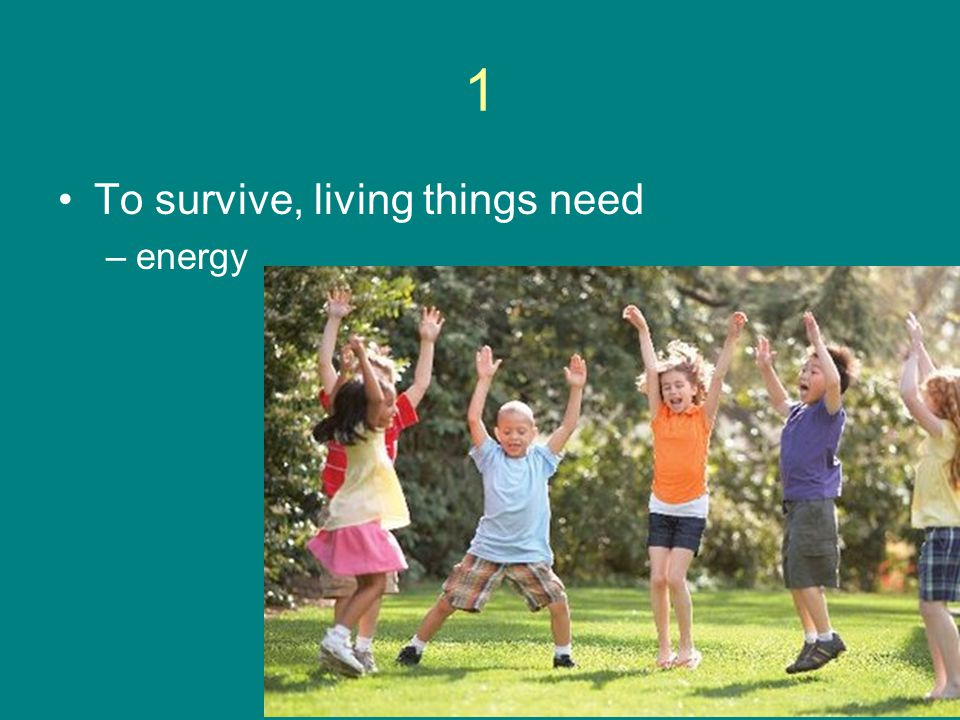 1 To survive, living things need –energy
