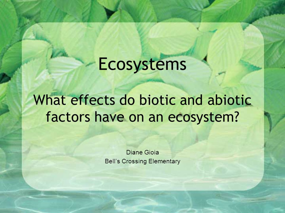 Ecosystems What effects do biotic and abiotic factors have on an ecosystem? Diane Gioia Bell's Crossing Elementary