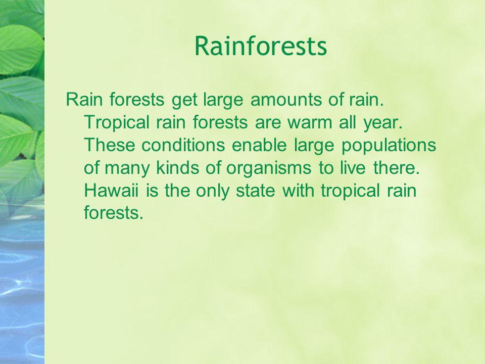 Rainforests Rain forests get large amounts of rain.