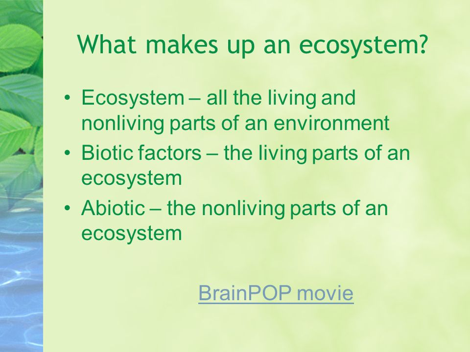 What makes up an ecosystem? Ecosystem – all the living and nonliving parts of an environment Biotic factors – the living parts of an ecosystem Abiotic